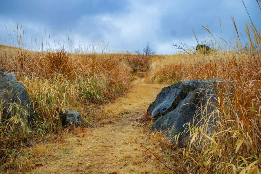 limestone landscape and hiking trails at Akiyoshidai National Park, Japan