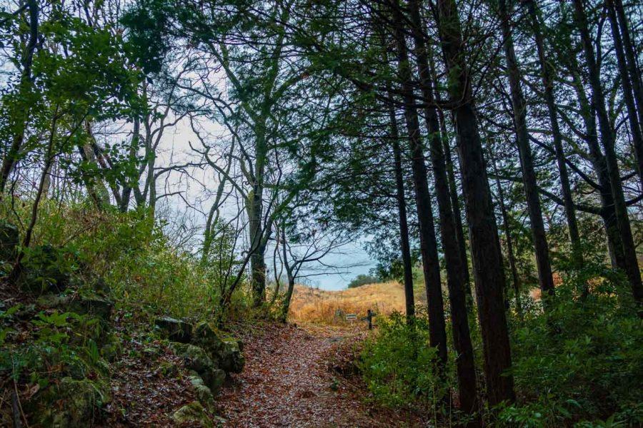 Taisho-do Hiking trails in akiyoshidai park in Japan