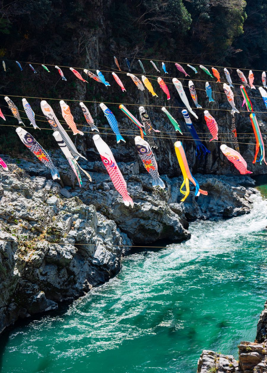 Koi banners fly over the Oboke Gorge in Japan