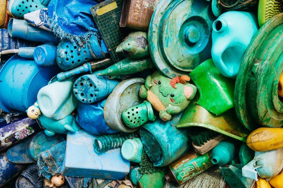 Close-up of Uno Chinu - the Black Sea Bream of Uno by Yodogawa-Technique